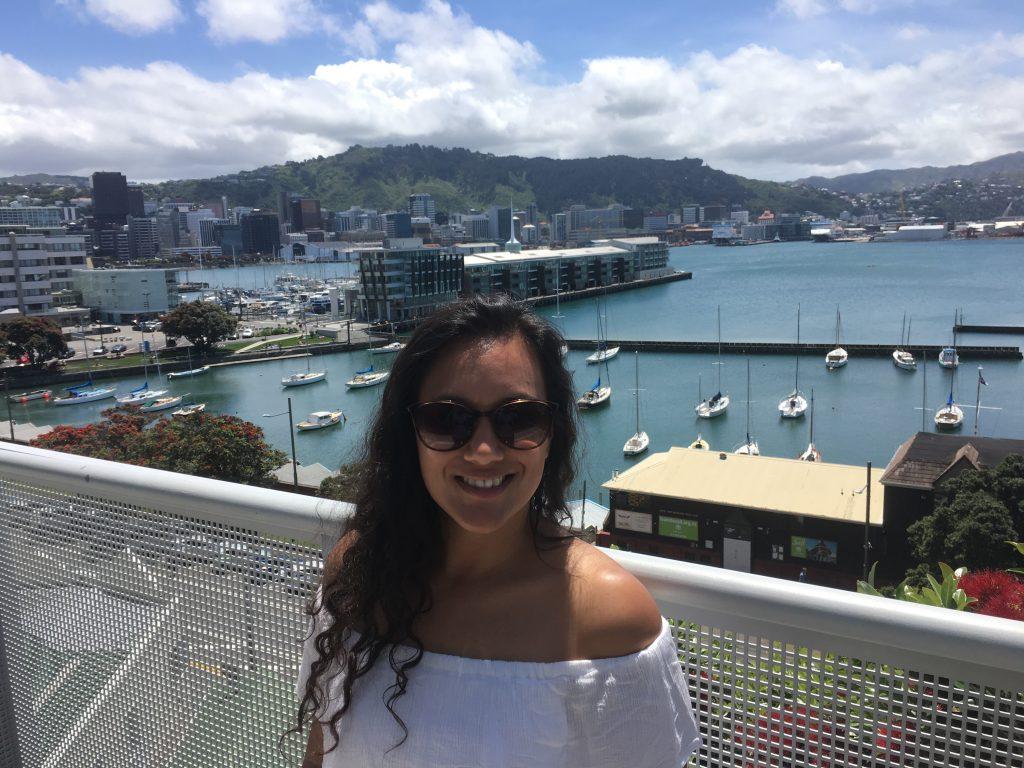 Wellington, Nieuw-Zeeland, Xmas